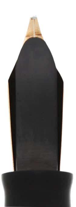 Vista posterior del plumín 1